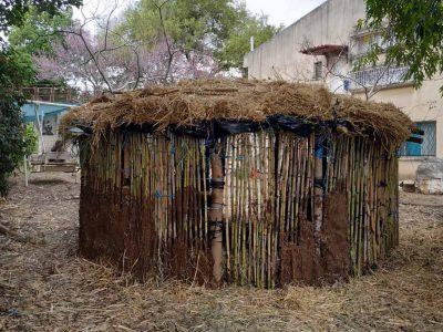 זיכרונות מאתיופיה בגן כלנית