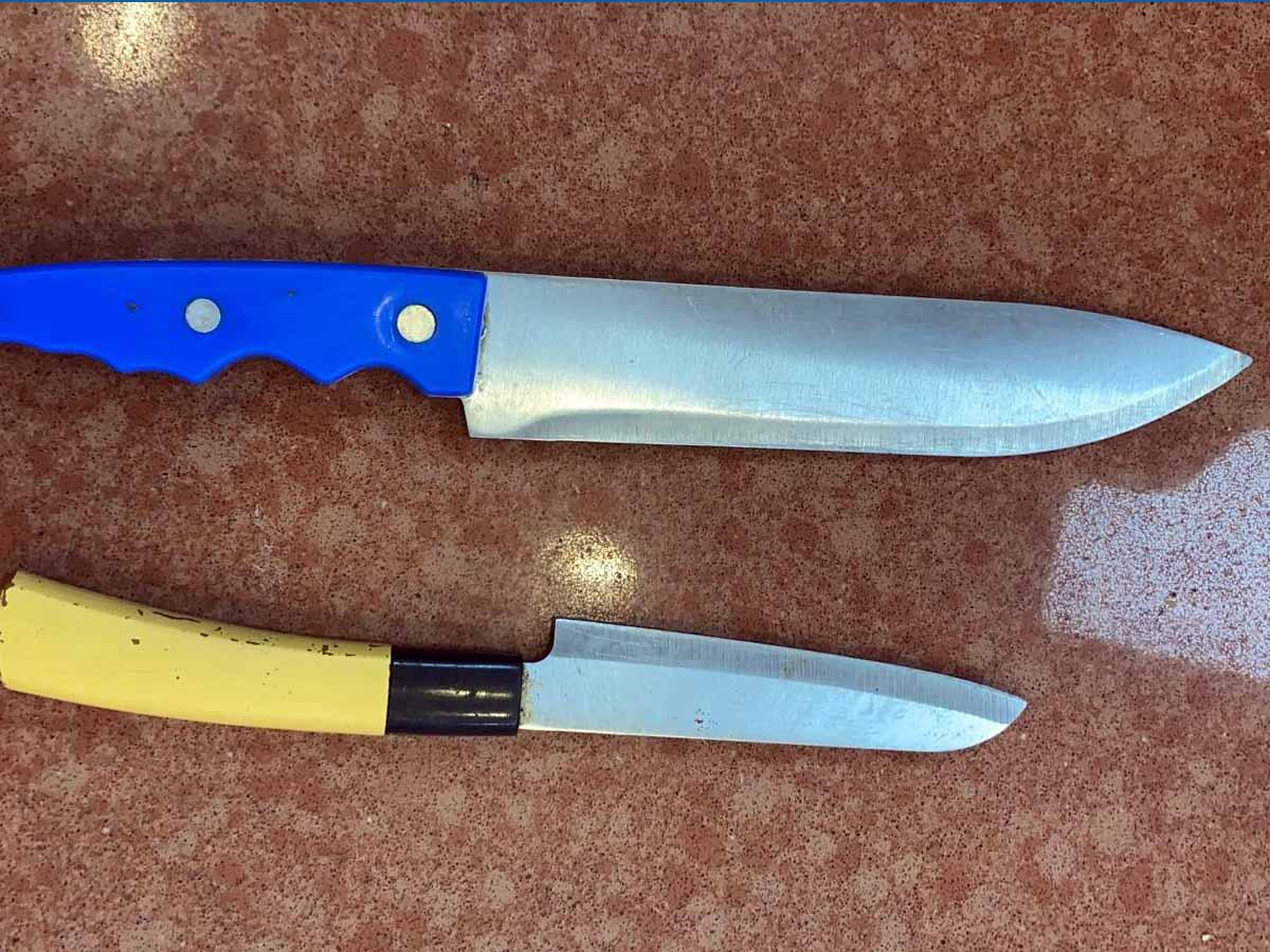 הסכינים שהתגלו בכיליהם של המסתננים הירדנים. צילום: דוברות המשטרה