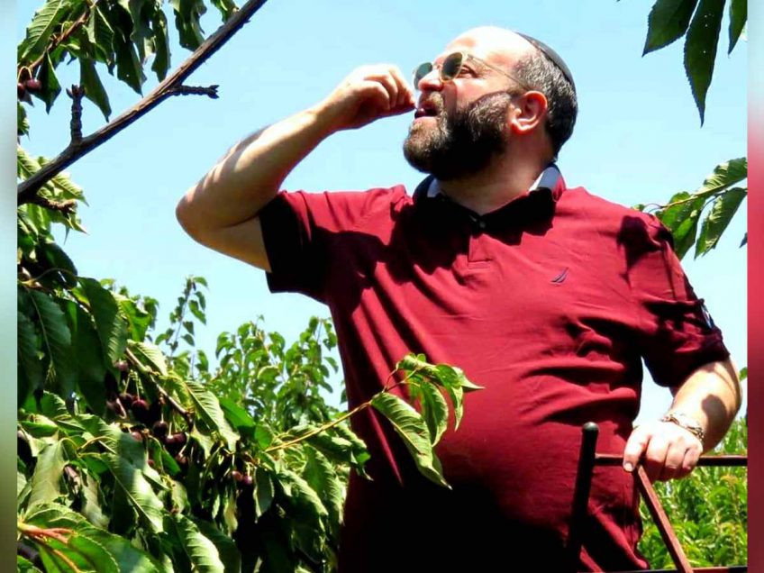 איש התקשורת קובי אריאלי ומשפחתו בקטיף דובדבנים, בקרו את 'בויה' בשוק לטוסטים טעימים – פלאש! רכילות בעמק