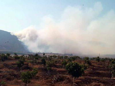 גלבוע: ארבעה מטוסים פועלים לכיבוי שריפה בהר יצפור